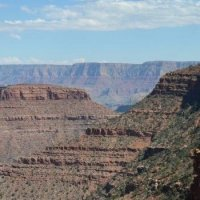 Grand Canyon - Close to cedar ridge